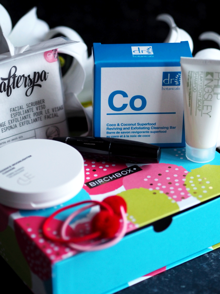 Birchbox, beauty subscription service, review, first impressions, makeup, skincare, haircare, body care, accessories, beauty products, cleanser, facial scrub, mascara, Philip Kingsley